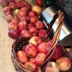 A Bushel of New Ideas for Apples