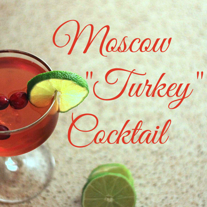 Christmas Cocktail Moscow Mule