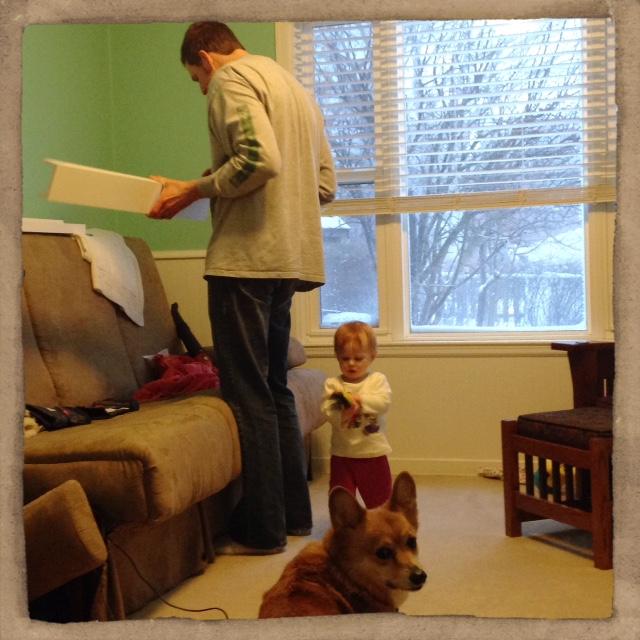 Daddy's Little Helpers help hang shelves